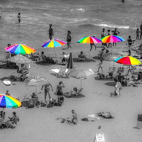 by Lena DeStefano - Landscapes Beaches