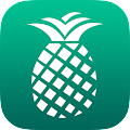PineApp APK for Bluestacks