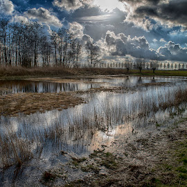 Peat Pits by Egon Zitter - Landscapes Prairies, Meadows & Fields ( peat, mud, pits, sunset, dark, marsh, swamp )