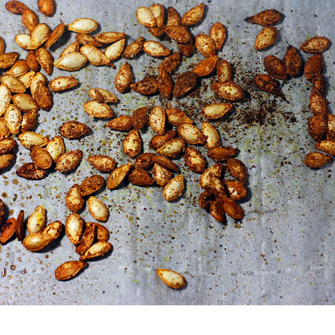 Roasted Seasoned Squash Seeds