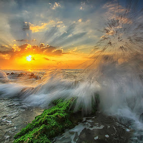 Shining Sun by Agoes Antara - Landscapes Sunsets & Sunrises ( nature, waterscape, ray off light, sunrise, beach, pwcsunbeams, sun )