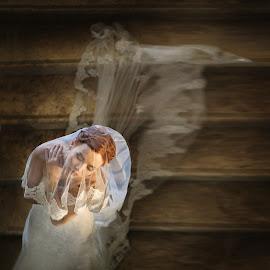Gentle portrait by DMYTRO SOBOKAR - Wedding Bride ( sobokar.com, wedding photography, wedding, woman, art, sobokar, veil, beauty, wedding photographer, bride, portrait )