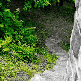 stairs to the castle  by Petrina Grimes - Landscapes Mountains & Hills (  )