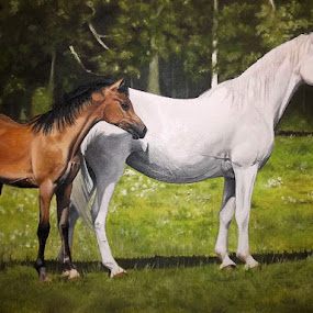 Horses by Kinga Fekete Kormos - Painting All Painting ( oil on canvas 60x50 cm )