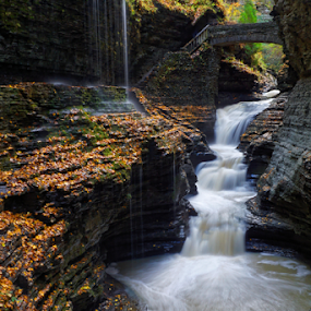 Watkins Glen by Eric Ebling - Landscapes Caves & Formations ( waterfalls, nature, state park, wakins glen, new york )