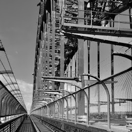 Sydney Harbour Bridge  by Angela Taya - Novices Only Objects & Still Life