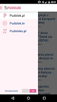 Screenshot of Pudelek.pl