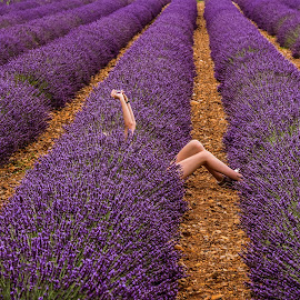 selfie in the fild by Marjan Gresl - Flowers Flower Gardens ( flowers, lavander, field, selfie, avtoportret, violet )