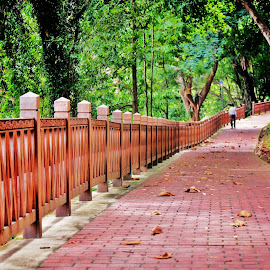 Red Brick Path #2 by Koh Chip Whye - City,  Street & Park  City Parks (  )