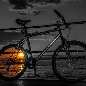 Dear bike2.jpg