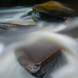 Nantahala Mountain Stream by Vick Crowley - Landscapes Waterscapes ( stream, mountain, appalachain, north carolina )