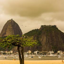 Botafogo Beach in Rio de Janeiro by Briand Sanderson - Landscapes Travel ( brazil, sugar loaf, rio de janeiro, pao de acucar, beach, botafogo )