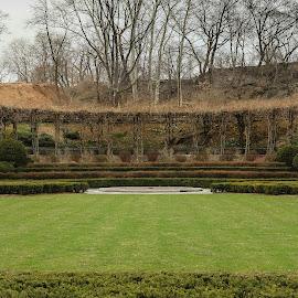 Central Park by Brittani Chin - City,  Street & Park  City Parks
