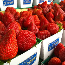 Strawberries - CA by Richard Duerksen - Food & Drink Fruits & Vegetables ( red, ca, fresh, strawberries, salinisas )