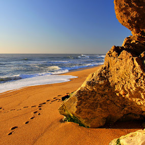 Praia do Norte by Gil Reis - Nature Up Close Rock & Stone ( beaches, nature, portugal )