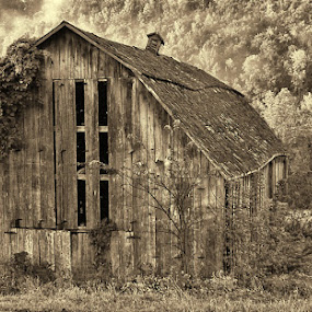 The lone shed by Val Ewing - Landscapes Mountains & Hills ( shed, sepia, pwcotherworldly, fog, montone )
