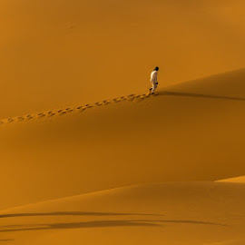 Access to the summit in the race challenge by Adeeb Alani - Nature Up Close Sand