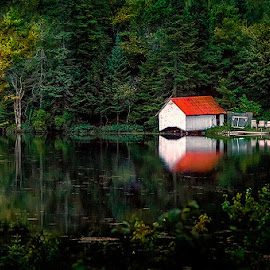 Lonely house by Dragan Milovanovic - Landscapes Forests (  )