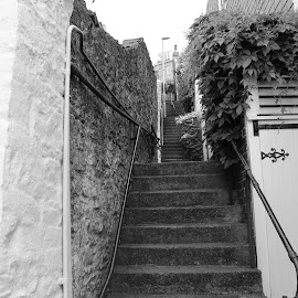 Long Steps going up in Brixham by Adam Ashaddo - City,  Street & Park  Street Scenes ( street, harbour, architecture, steps, brixham )