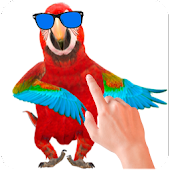 App Tickle Talking Parrot apk for kindle fire
