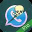WhatsSpy