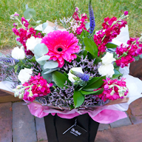 Seasonal gerberas and stocks hand tied bouquet - The Florist Tunbridge Wells
