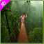 APK Game Jungle Free Run Game for iOS