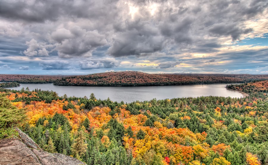Transforming View by James Wheeler - Landscapes Forests ( yellow, travel, landscape, photography, booth rock trail, 2011, nikon, september, clouds, algonquin park east, canada, hdr, green, d5000, ontario, lake, high dynamic range, algonquin colors, photo, transforming view, picture, fall, trees, view, geotagged, landscapes, wide angle lens )