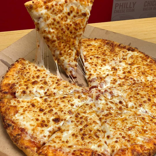 The Pizza Delights, Loni Dehat, Loni Dehat logo