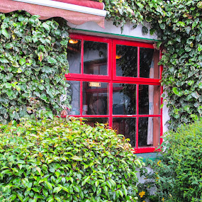 Pub Window by Judy Smith - Buildings & Architecture Other Exteriors ( ireland, window, ringofkerry, pub )
