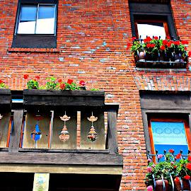 Bavarian Detailing by Tara Bauman - Buildings & Architecture Architectural Detail ( washington, bavaria, brick, german, windows, leavenworth, flower boxes, window boxes )