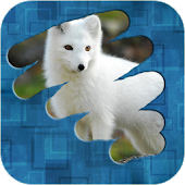 Game Scratch and guess the picture APK for Kindle