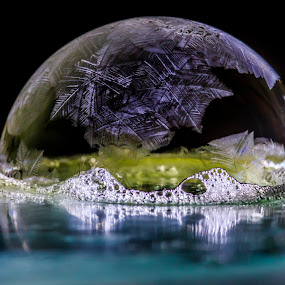 Crystalized II by Nico Carbajales - Abstract Macro ( frozen     bubbles     water     winter     reflection     crystal     ice )