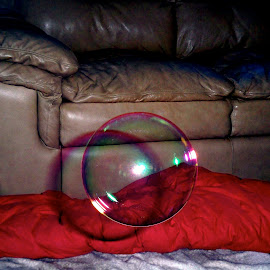 bubble perfection by Traceystar Meyer - Novices Only Objects & Still Life