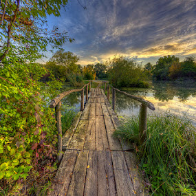 Old wooden bridge by Boris Frković - Landscapes Waterscapes