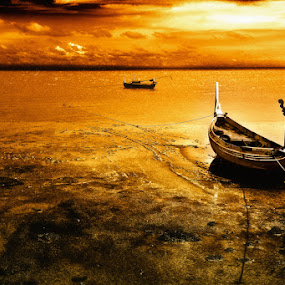 Golden Sea by Firman Afrianto - News & Events World Events