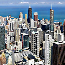 Skyline of Chicago by Tricia Scott - City,  Street & Park  Skylines ( skyline, sky, buildings, architecture, chicago, city )