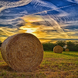 Summer Sunset by Marco Bertamé - Landscapes Prairies, Meadows & Fields ( clouds, field, sky, blue, condensation trail, sunset, yellow, hay bale,  )