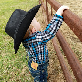 Littlest Cowboy by Amy Smith - Babies & Children Babies