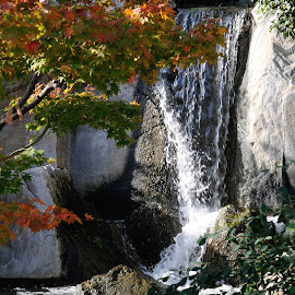 Japanese Garden by Victor Eliu - Landscapes Waterscapes ( autumn, waterscape, waterfall, monte carlo, japanese, landscape, garden )