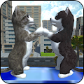Game Cute Cat And Puppy World apk for kindle fire