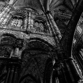 interior catedral, Avila by Roberto Gonzalo Romero - Buildings & Architecture Places of Worship ( black and white, cathedral, avila, catedral )