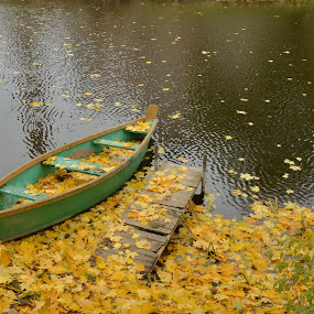 Boat and golden autumn... by Zenonas Meškauskas - Transportation Boats ( autumn, leaves, boat, golden, river )
