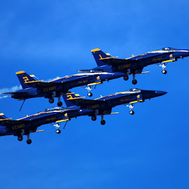 Blue Angels 995 by Raphael RaCcoon - Transportation Airplanes ( blue angels )