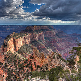 Wotan's Throne by Peter Kennett - Landscapes Deserts ( canyon, woton, storm, landscape, grand canyon, throne, national park, wotan, arizona, southwest, squall, view, rain )