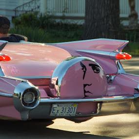Pink Cadillac by Jim Harris - Transportation Automobiles ( car, gm, pink, cadilac, classic )