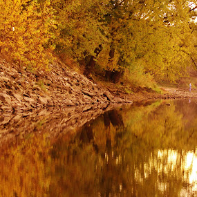 Golden Reflections by Diane Ebert - Landscapes Sunsets & Sunrises ( #goldenhour, #abstract, #lovephotography,  )