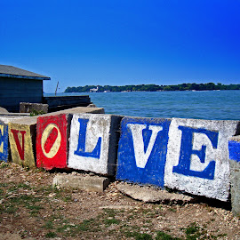Evolve by Michiale Schneider - Artistic Objects Other Objects ( painted, south bass island, ohio, put-in-bay, lake erie, breakwall, letters, evolve )