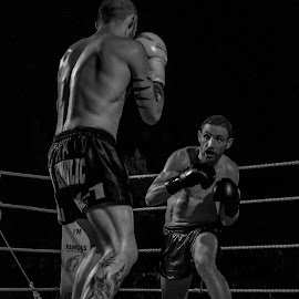 The Champ by Mario Borg - Sports & Fitness Other Sports ( kick boxing, black and white, sport, k1,  )