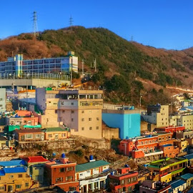 Gamcheon cultural village by Chor Yin Lim - Buildings & Architecture Homes ( houses, peaceful, colourful, village, landscape )
